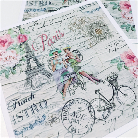 SET OF 2 cards blank chic french paris eiffel tower bicycle pretty roses card