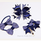 Bella 'Formal' School Bow Pack - Custom Made in school colors