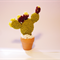 Prickly Pears Mini Cactus plant and vase