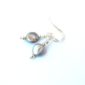Oyster Coin Pearl and Sterling Silver Earrings