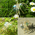 Glimmer- The sun catching spider!