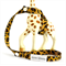Leopard is the new black Sophie Keeper