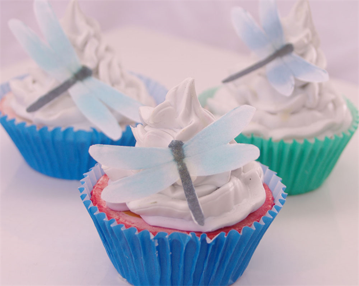 Dragonfly cake decoration 20pc rainbow rice paper birthday for 3d printer cake decoration