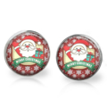 Father Christmas Stud Back Glass Earrings