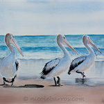 "Pelicans, PRINT, Watercolour Painting -  8""x 10"" Ocean, Beach"