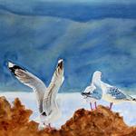 """Seaguls, PRINT, Watercolour Painting -  8""""x 10"""" Ocean, Beach"""