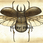 Atlas Beetle