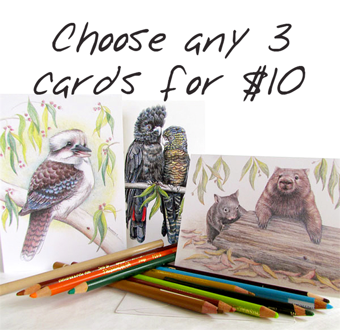 Any 3 Australian greeting cards for 10 Wildlife illustrations – Australian Birthday Cards Online
