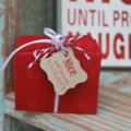 24 Nice until proven Naughty Gift Tags ~ Christmas Tags ~ Fun Christmas Tags