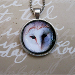 Free shipping. Barn Owl Pendant.