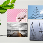 """Set of four 6x4"""" Photography Greeting Cards (Set 6)"""