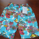 Boy's Shorts/pants Size 3