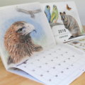 2016 Calendar A4 Wall - Australian threatened species - animals birds wildlife