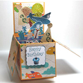 BIRTHDAY PARTY POP UP CARD IN A BOX AEROPLANE