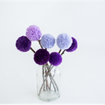 Pom Pom Flower