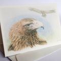 Wedge-tailed Eagle greeting card Australian wildlife art