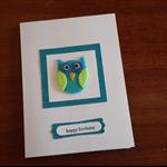 Fun Owl Boy Birthday Card.