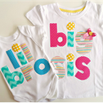 Big Sister Little Brother Newborn Announcement Baby Gift