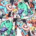 "Sizes  7  ""Super Heroes"" Shorts"