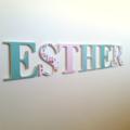 Wall or Door Name Plaque. 17cm. 6 Letters.