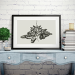 A4 limited edition Giclée print of butterfly sketch hand signed by artist.