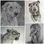 Pet Portraits Made to order Original Pencil Drawing. Dogs, Cats, Animals