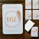 Baby Milestone Cards - Gold Pink Feather - Girl