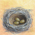 "Grey Butcherbird Nest & Eggs. 8"" x 8"" original acrylic painting on canvas."