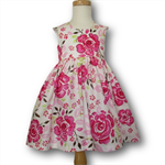 Tea Party Dress (SIZE 2-3)