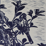 Original Linocut Artwork, New Holland Honey Eater.
