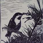 Original Linocut Artwork, Eastern Spinebill, Bird,Nature.