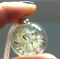 Dandelion Seed Necklace, Wishing Necklace.