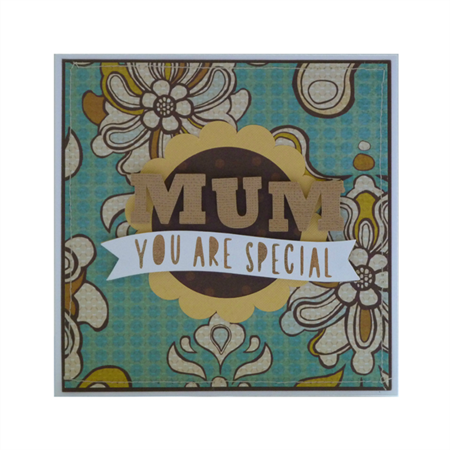 Mother's Appreciation Blank Greeting Card