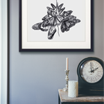 A3 limited edition Giclée print of butterfly sketch hand signed by artist.