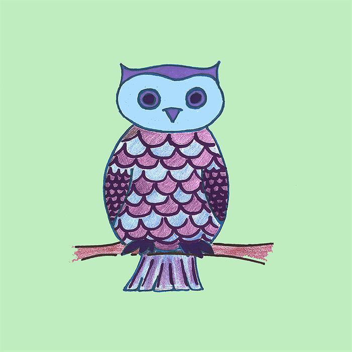 Childrens wall art - Owl in mint, Nursery art print, owl ...