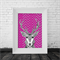 """Comet"" the Reindeer