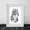 "A4 Black & White Print ""Brumby"""