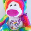 Personalised Teddy; Rainbow Bear; Lesbian Gay Teddy bear; Embroidered Bear