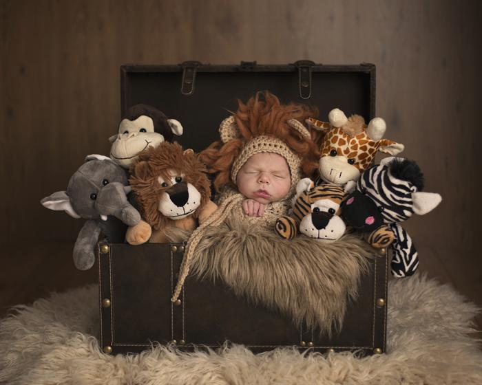 Baby lion bonnet unisex newborn photography prop baby boy prop
