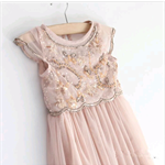 Stunning Blush Pink beaded Party desss