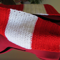 Handmade Crocheted Team Supporters Cowl