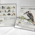 2017 Desk Calendar Australian wildlife conservation - animals birds Illustration