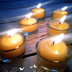 Beeswax Tealight Candles x 6 + 1 Re-usable Glass Tealight Holder