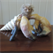 Old man crab. Felted textile art posable sculpture. Wool felted and clay. Pastel
