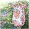 Eden Playsuit Newborn to 2 Pink Peach Floral