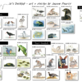 Any 3 Greeting Cards for $12... Australian wildlife illustrations, animals, bird