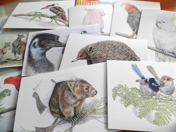 Australian king parrots greeting card wildlife art for Wildlife christmas cards 2016