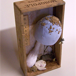 Soft Sculpture, Fabric Mushroom with Dormouse, Toadstool, Fungi, Fungus