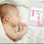 BABY MILESTONE CARDS Chevron Giraffe Pink