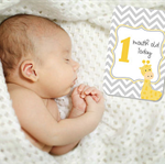 BABY MILESTONE CARDS
